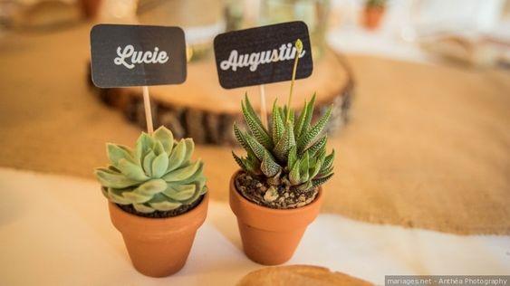 Des plantes grasses comme souvenir pour les invités de mariage. Julie Nagy Wedding Planner Lyon